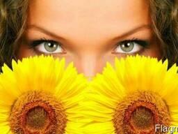 Sunflower Oil, Crude & Refined. Ukraine Origin.