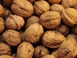 Фисташки и грецкий орех