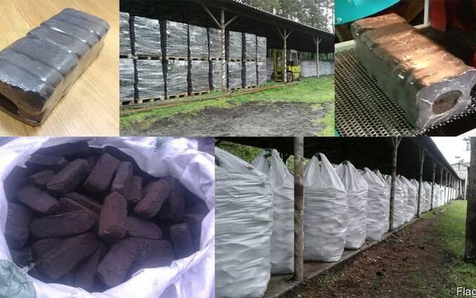 Fuel peat briquettes (peat bricks)