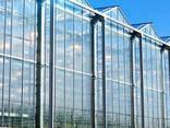 Greenhouse Construction, - фото 1