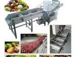 Машина для мойки фруктов - фото 1