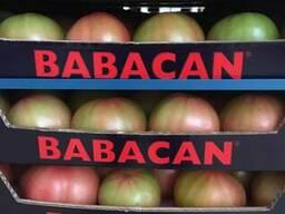 Овощи 2017 новый сезон от фабрики babacan import export - фото 2