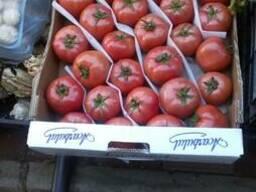 Помидоры, вишня, лимоны, апельсины, любой сезонный товар
