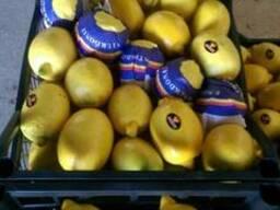 Помидоры, вишня, лимоны, апельсины, любой сезонный товар - фото 2