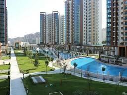 апартаментыСтамбульское чудо!