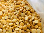 We are offering millet, chickpeas, whole peas, sunflower seeds for feeding, split peas - photo 2
